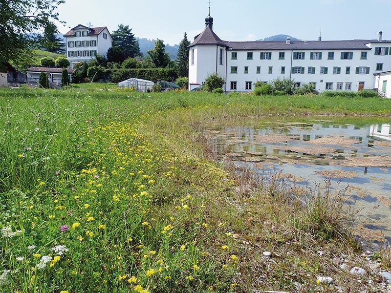 Kloster_Gallerie
