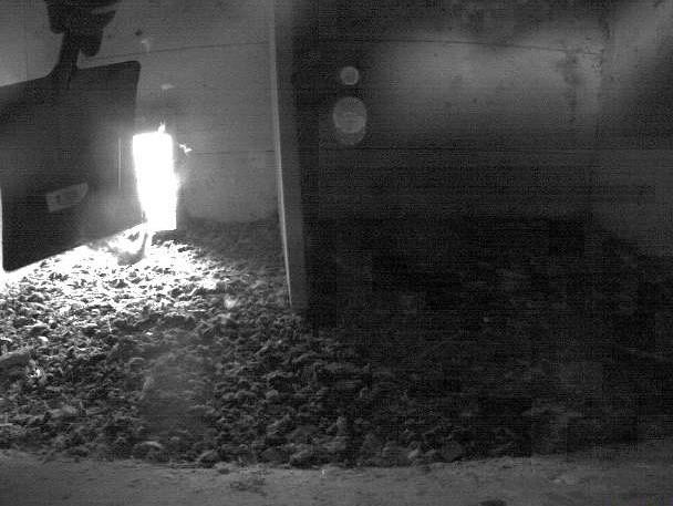 1.2.2021 Die Brutsaison 2021 beim Tratthof in Diepoldsau beginnt mit dem Ausmisten des Nistkastens und dem Putzen der Webkamera-Linse.
